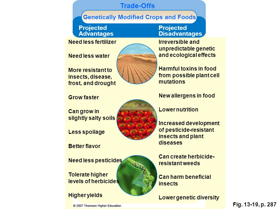 the advantages and disadvantages of gene revolution Economic = increased exports and rising farm incomes environmental = less fertilisers and pesticides are needed economic & social = some studies show yields increase significantly although.