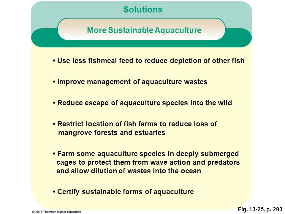 More Sustainable Aquaculture