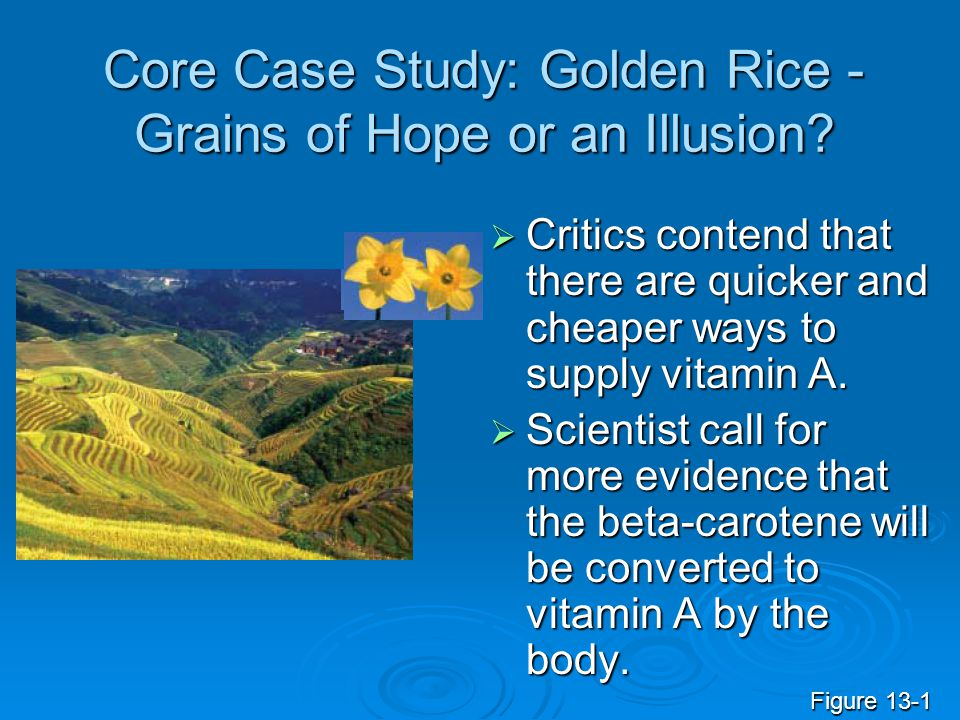 Core Case Study: Golden Rice -Grains of Hope or an Illusion