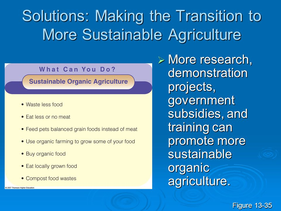 Solutions: Making the Transition to More Sustainable Agriculture