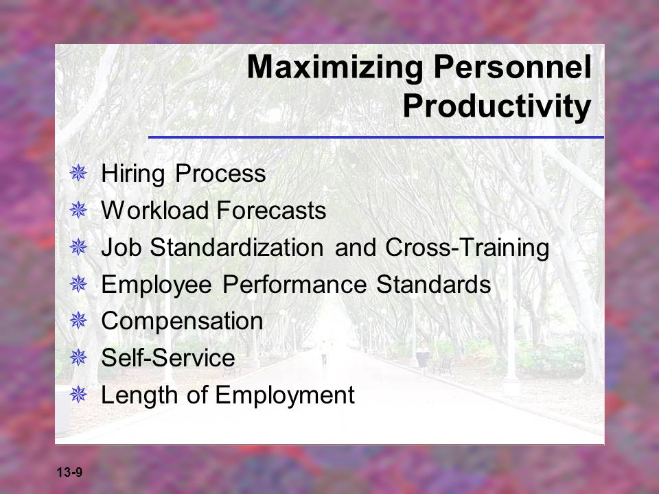 Maximizing Personnel Productivity