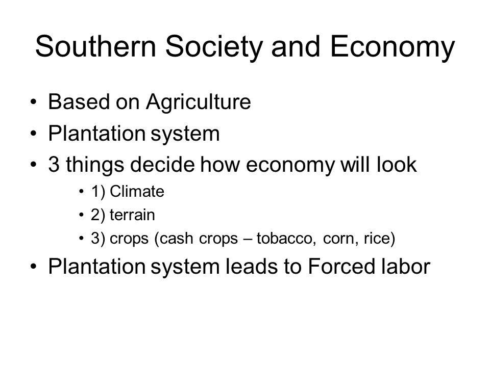 Southern Society and Economy