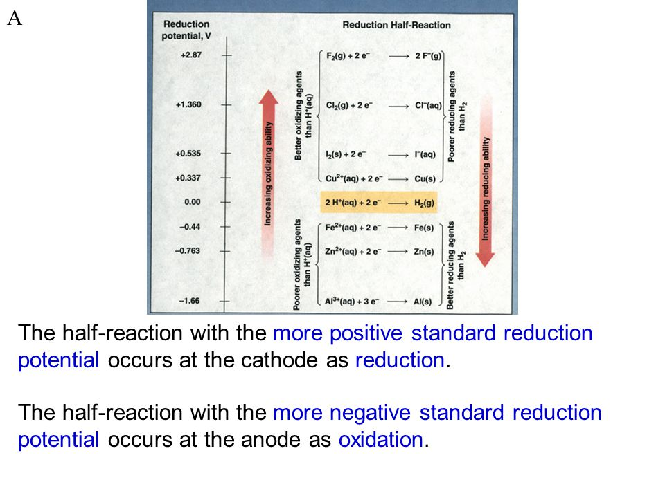 A The half-reaction with the more positive standard reduction potential occurs at the cathode as reduction.