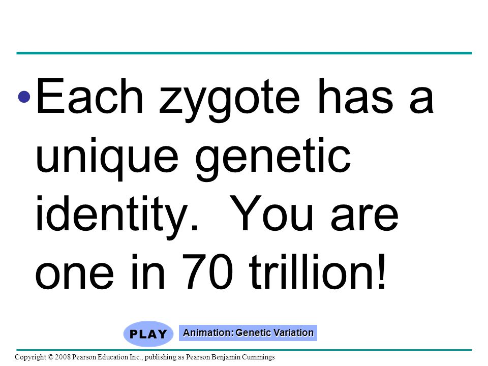 Animation: Genetic Variation
