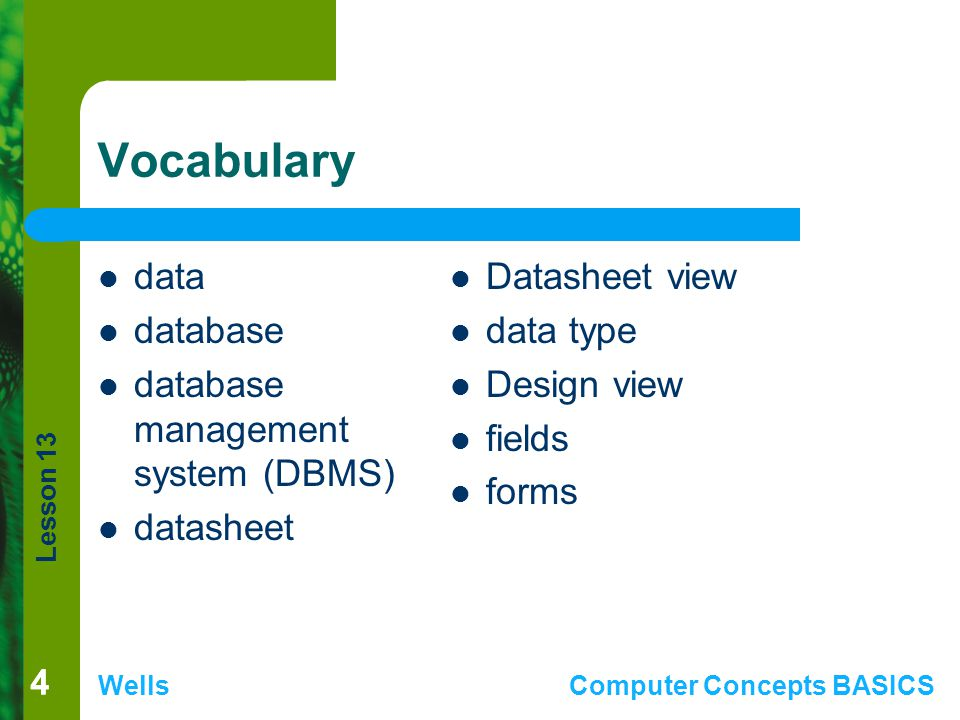 Vocabulary data database database management system (DBMS) datasheet