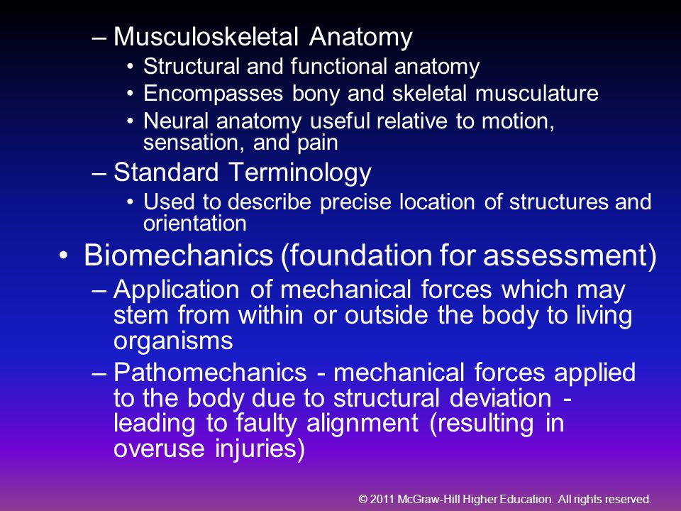 Biomechanics (foundation for assessment)