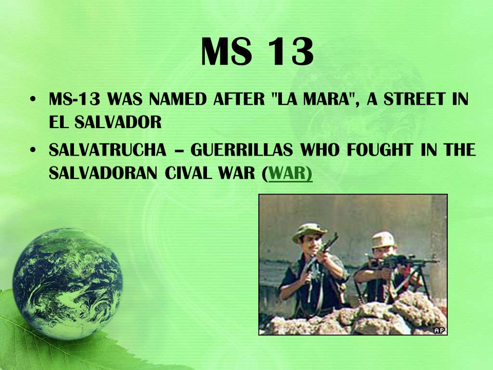 MS 13 MS-13 was named after La Mara , a street in El Salvador