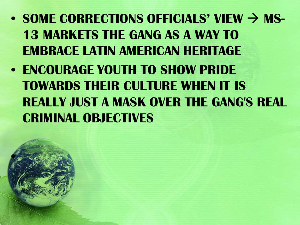 SOME CORRECTIONS OFFICIALS' VIEW  MS-13 MARKETS THE GANG AS A WAY TO EMBRACE LATIN AMERICAN HERITAGE