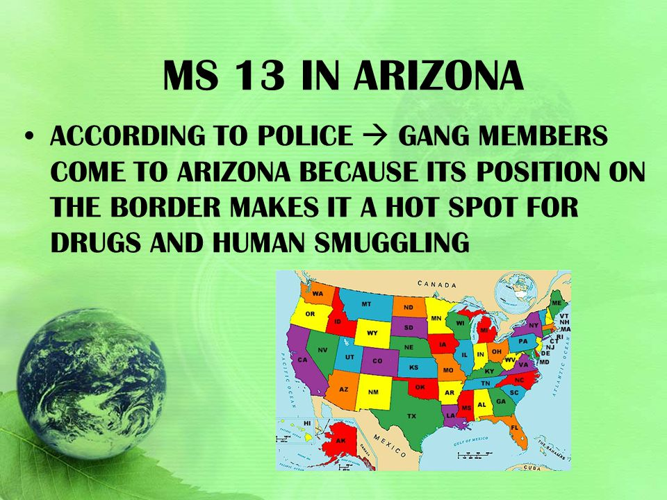 Ms 13 in Arizona