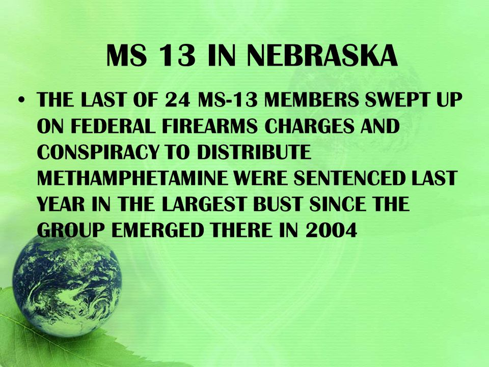 Ms 13 in Nebraska