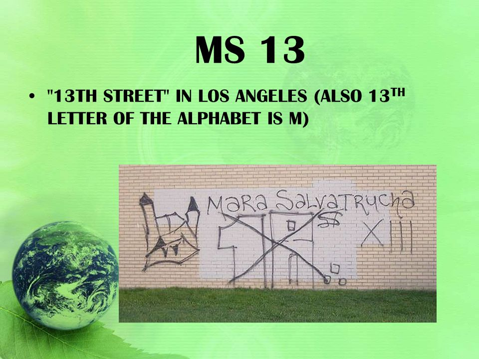 MS 13 13th Street in Los Angeles (also 13th letter of the alphabet is M)