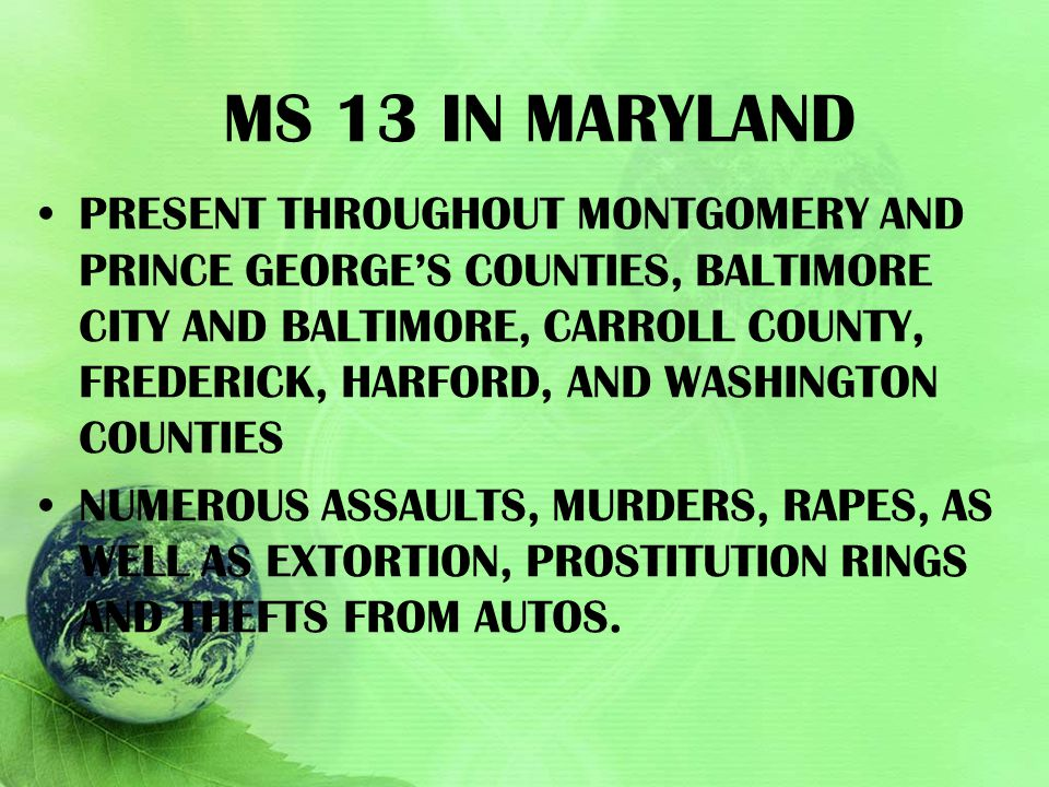 Ms 13 in maryland