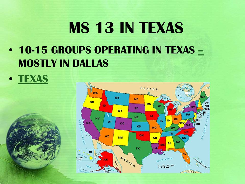 Ms 13 in Texas 10-15 groups operating in Texas – mostly in Dallas