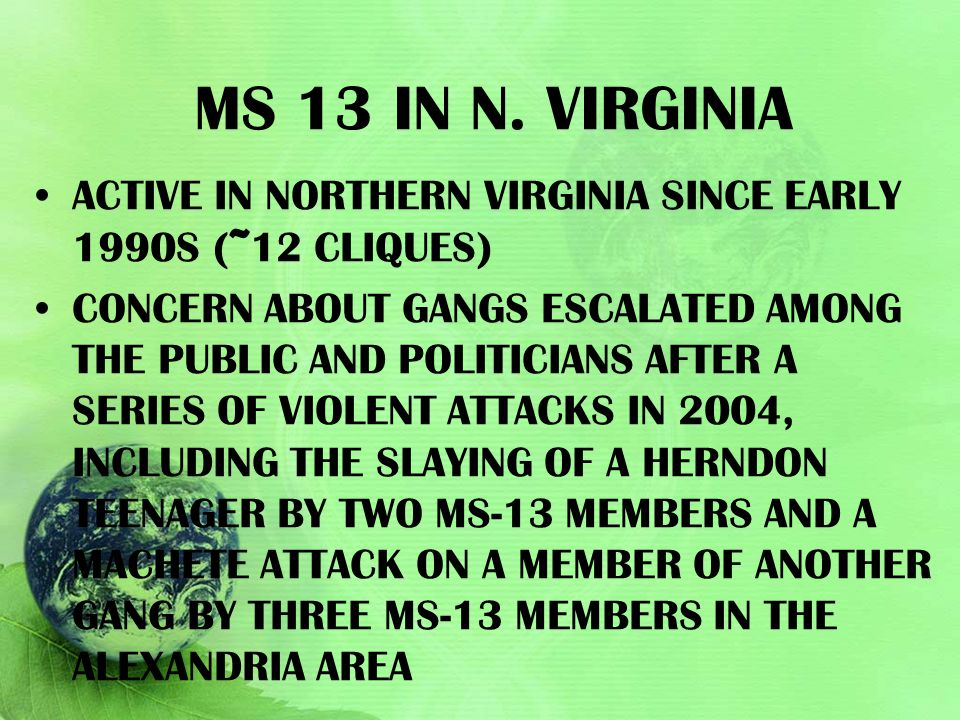Ms 13 in N. Virginia active in Northern Virginia since early 1990s (~12 cliques)