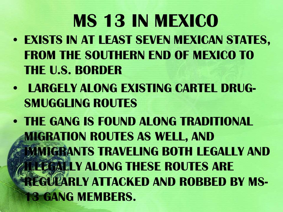 Ms 13 in Mexico exists in at least seven Mexican states, from the southern end of Mexico to the U.S. border.