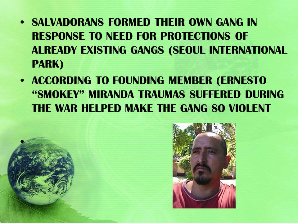 Salvadorans formed their own gang in response to need for protections of already existing gangs (Seoul International park)