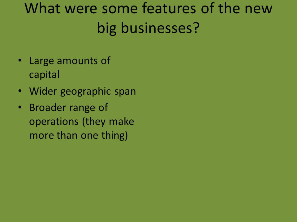 What were some features of the new big businesses