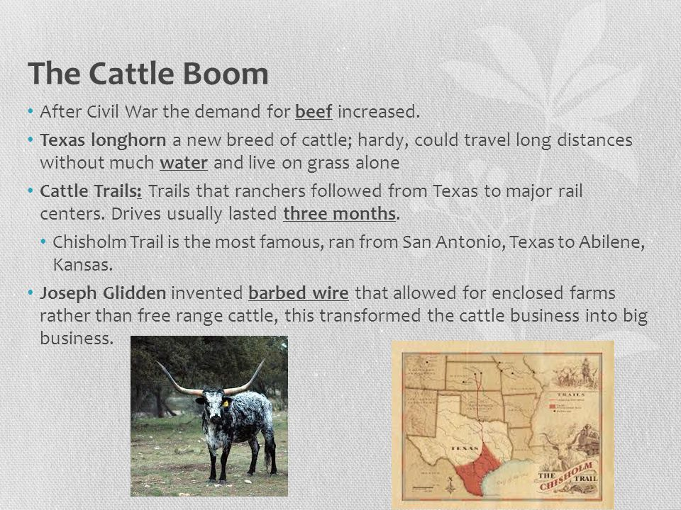 The Cattle Boom After Civil War the demand for beef increased.