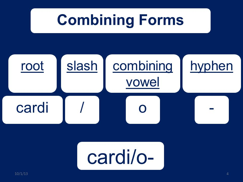 cardi/o- Combining Forms cardi / o - root slash combining vowel hyphen