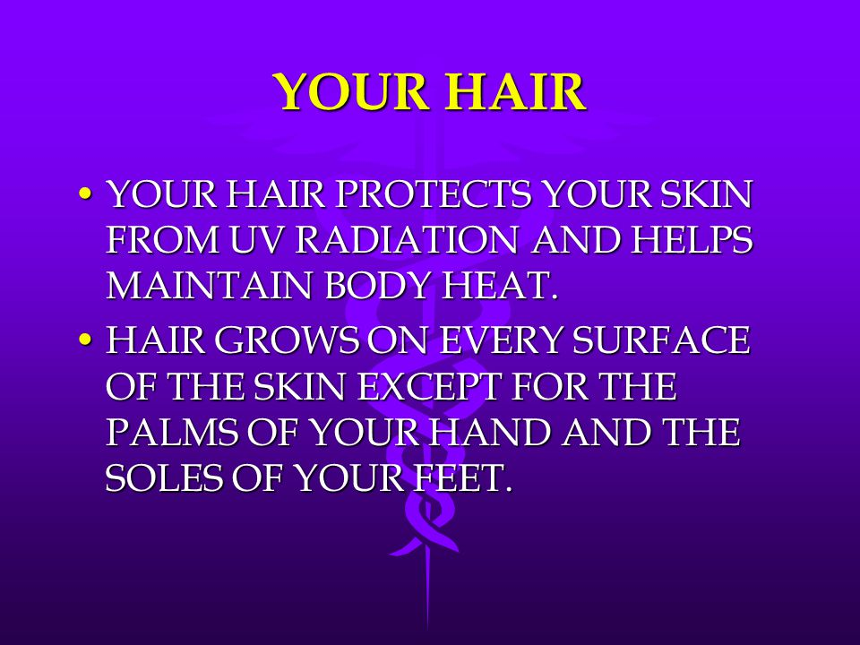 YOUR HAIR YOUR HAIR PROTECTS YOUR SKIN FROM UV RADIATION AND HELPS MAINTAIN BODY HEAT.