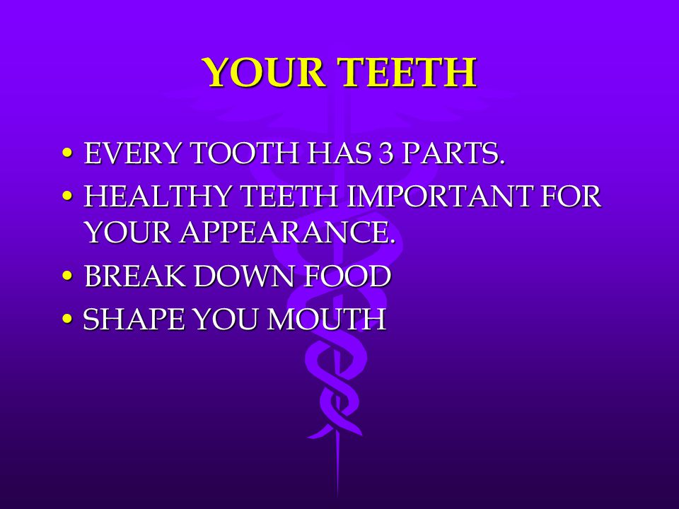 YOUR TEETH EVERY TOOTH HAS 3 PARTS.