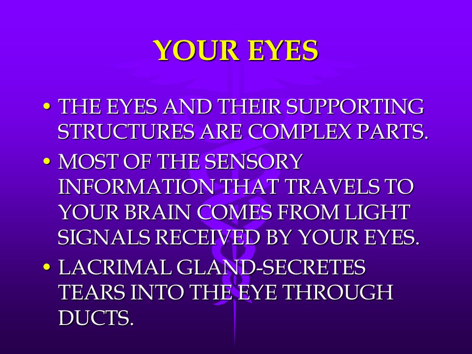YOUR EYES THE EYES AND THEIR SUPPORTING STRUCTURES ARE COMPLEX PARTS.
