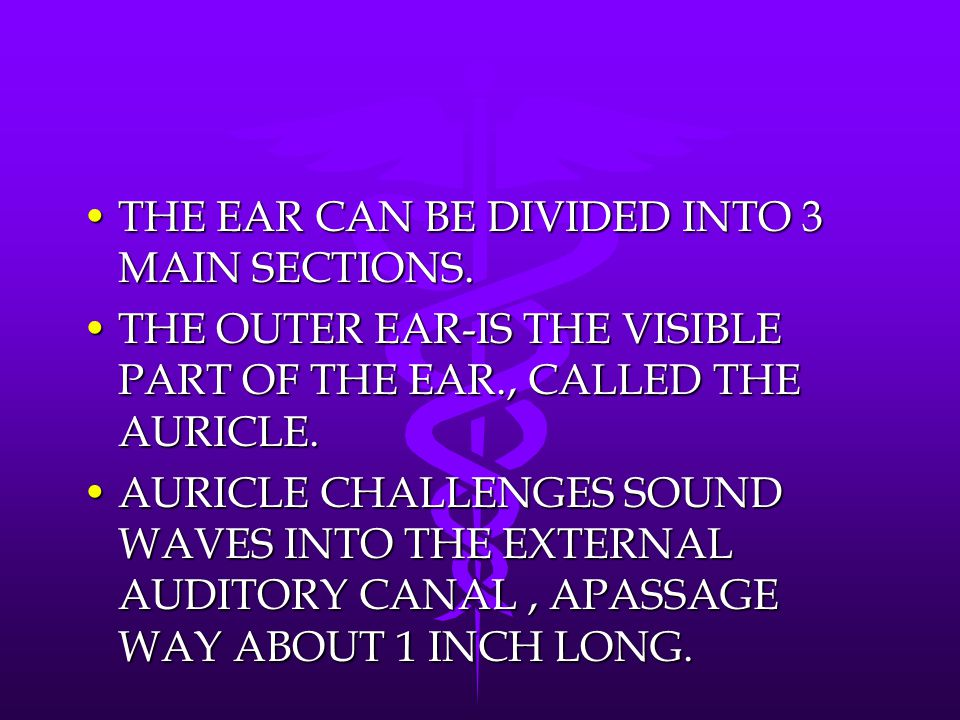 THE EAR CAN BE DIVIDED INTO 3 MAIN SECTIONS.