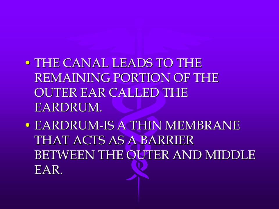 THE CANAL LEADS TO THE REMAINING PORTION OF THE OUTER EAR CALLED THE EARDRUM.
