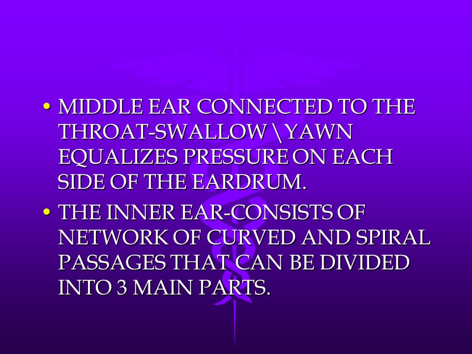 MIDDLE EAR CONNECTED TO THE THROAT-SWALLOW \YAWN EQUALIZES PRESSURE ON EACH SIDE OF THE EARDRUM.