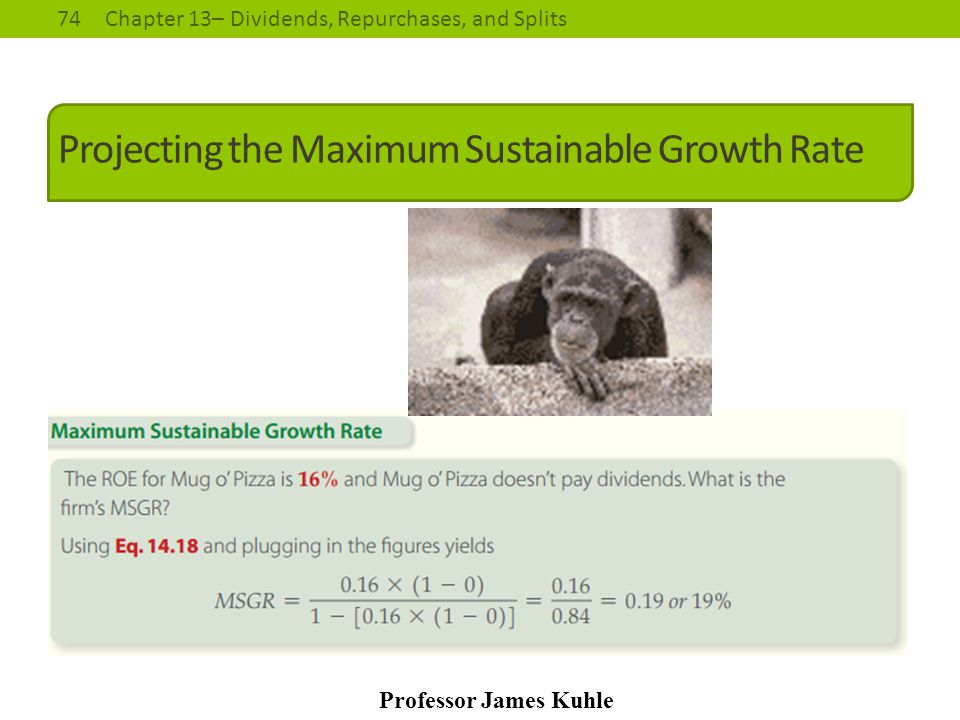 Projecting the Maximum Sustainable Growth Rate