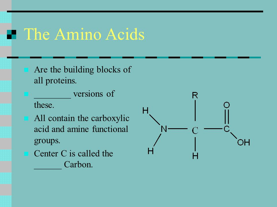 The Amino Acids Are the building blocks of all proteins.