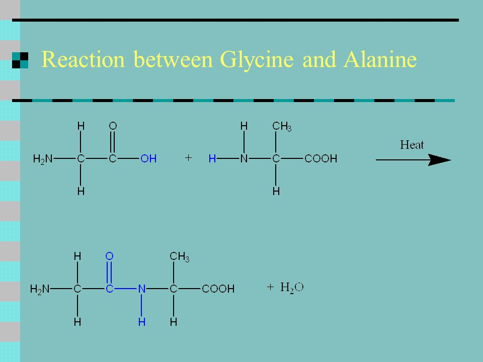 Reaction between Glycine and Alanine