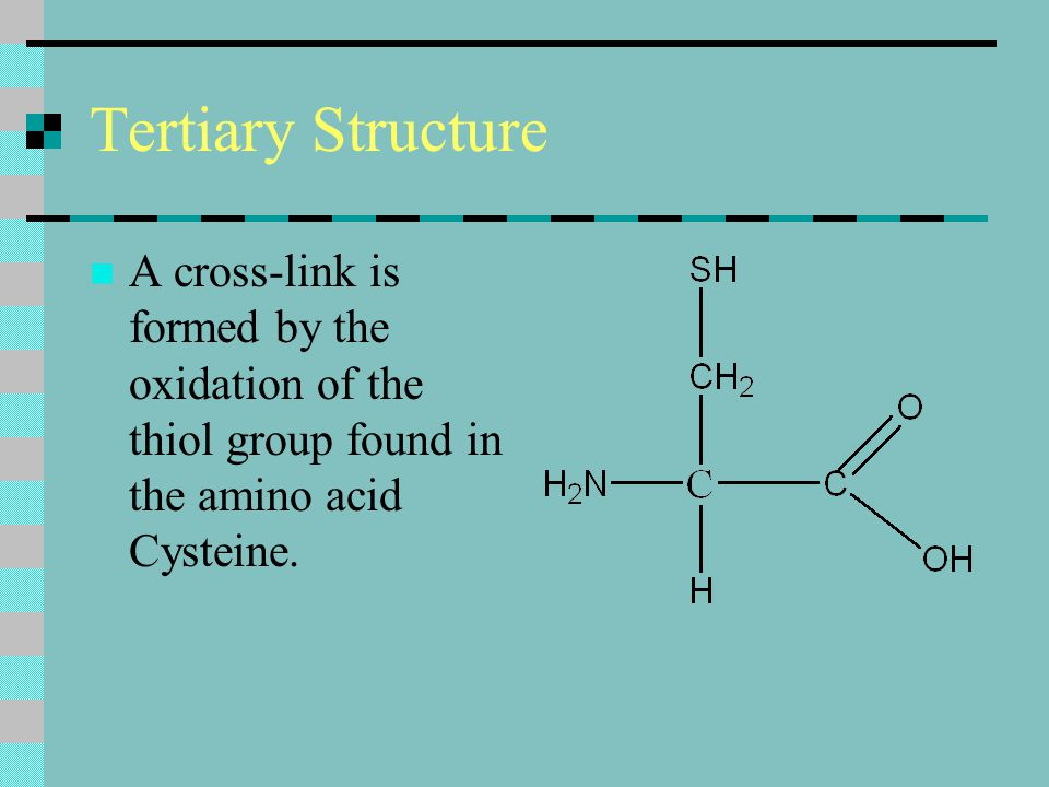 Tertiary Structure A cross-link is formed by the oxidation of the thiol group found in the amino acid Cysteine.