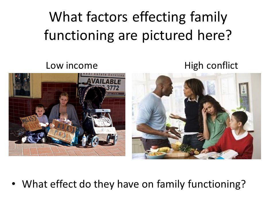 What factors effecting family functioning are pictured here