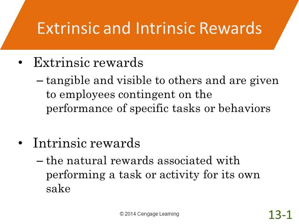 Extrinsic and Intrinsic Rewards