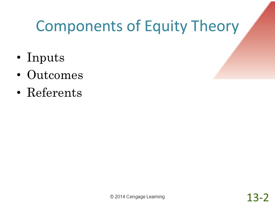 Components of Equity Theory