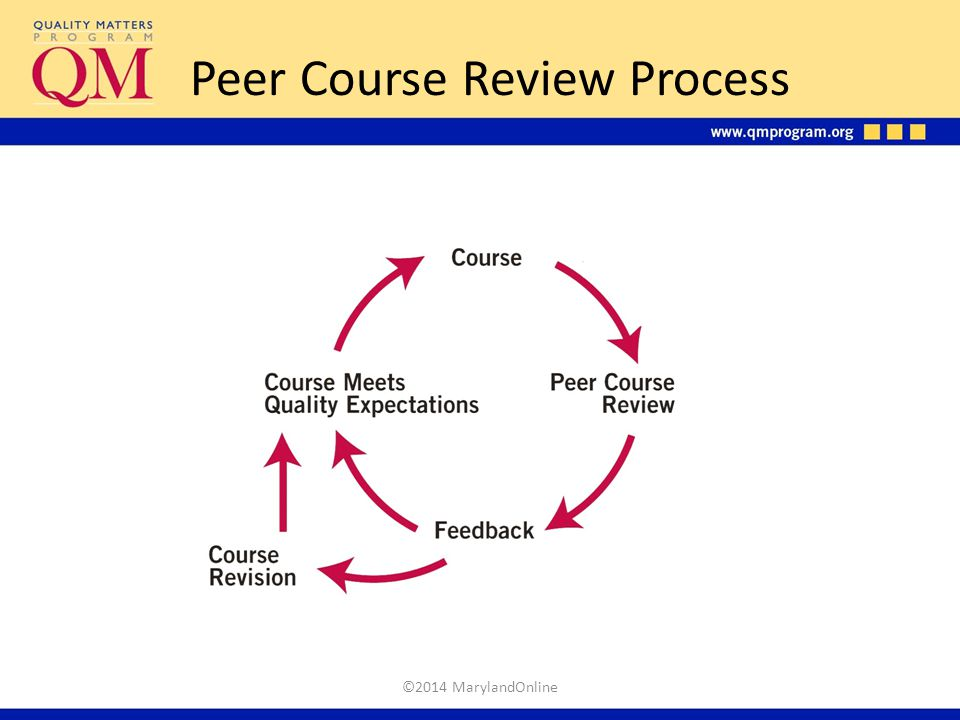 Peer Course Review Process