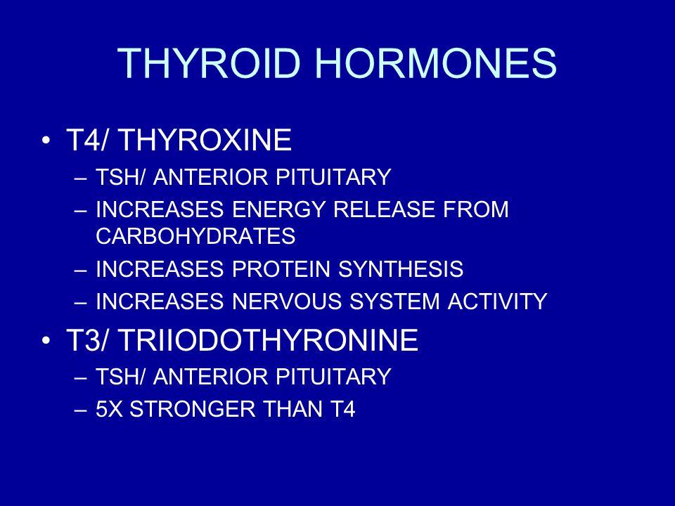 THYROID HORMONES T4/ THYROXINE T3/ TRIIODOTHYRONINE