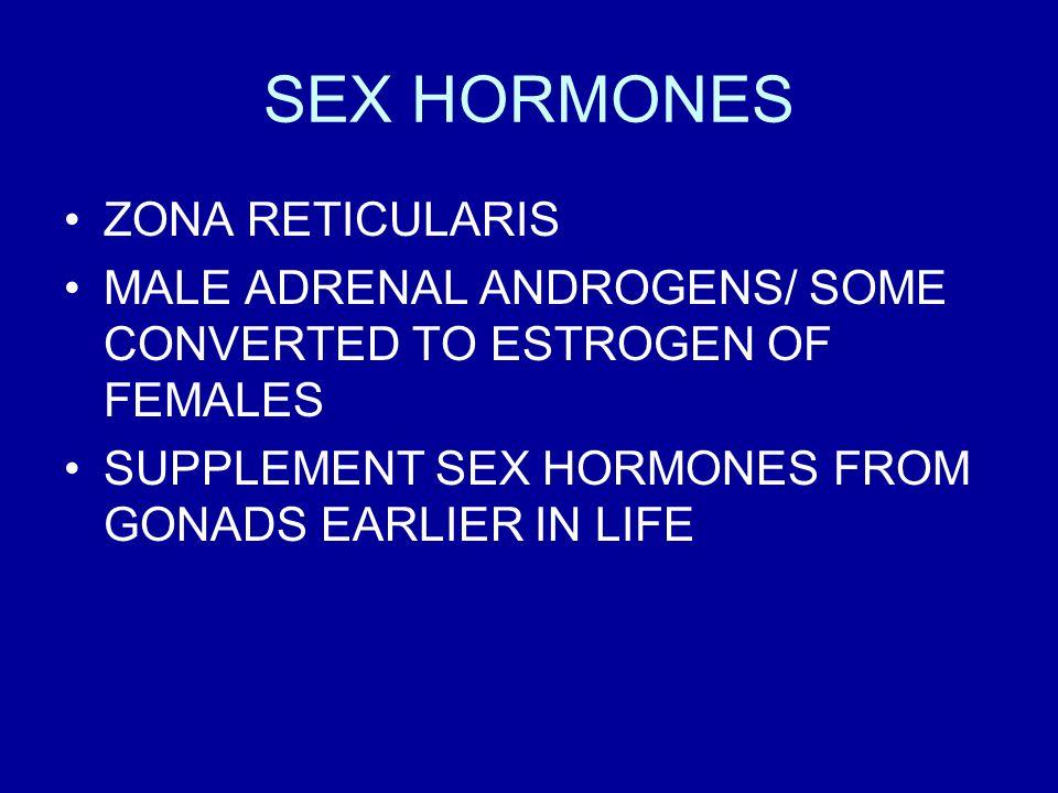 SEX HORMONES ZONA RETICULARIS