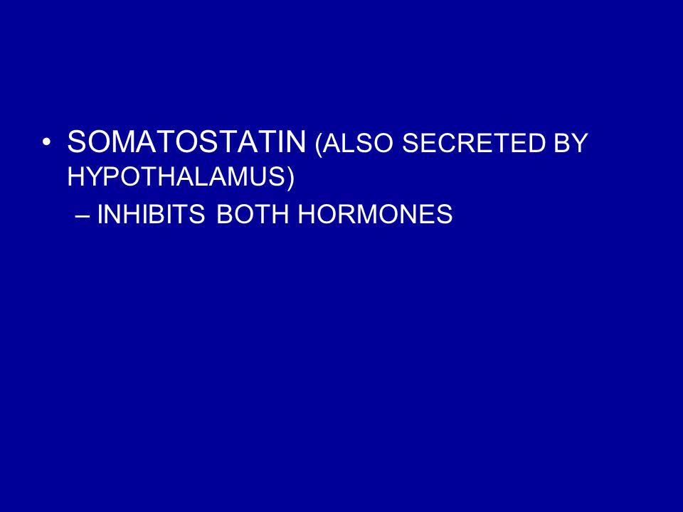 SOMATOSTATIN (ALSO SECRETED BY HYPOTHALAMUS)