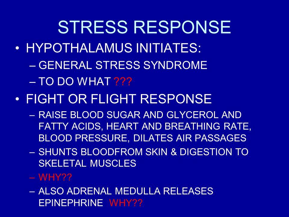 STRESS RESPONSE HYPOTHALAMUS INITIATES: FIGHT OR FLIGHT RESPONSE