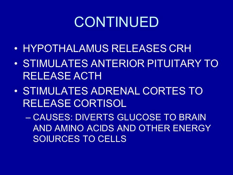 CONTINUED HYPOTHALAMUS RELEASES CRH