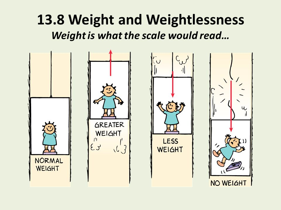 13.8 Weight and Weightlessness Weight is what the scale would read…