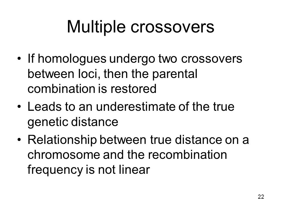 Multiple crossovers If homologues undergo two crossovers between loci, then the parental combination is restored.