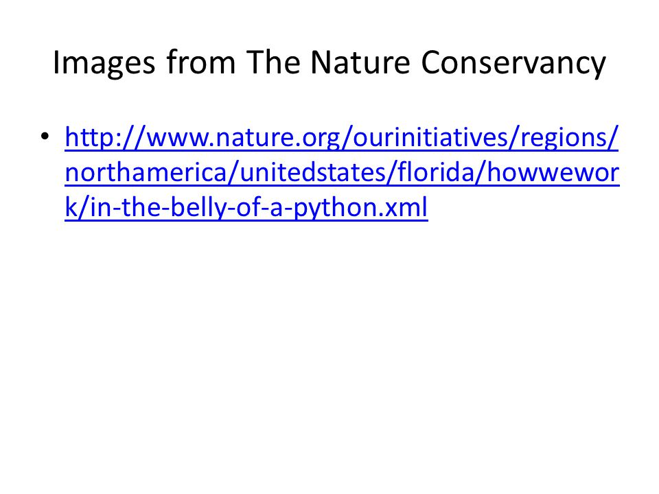 Images from The Nature Conservancy