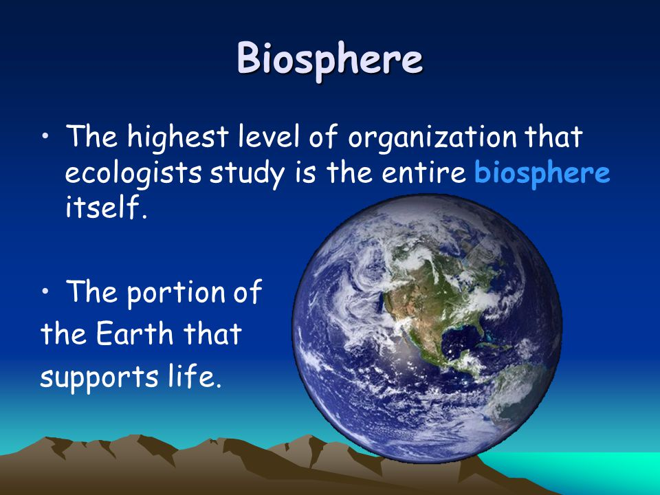 Biosphere The highest level of organization that ecologists study is the entire biosphere itself. The portion of.
