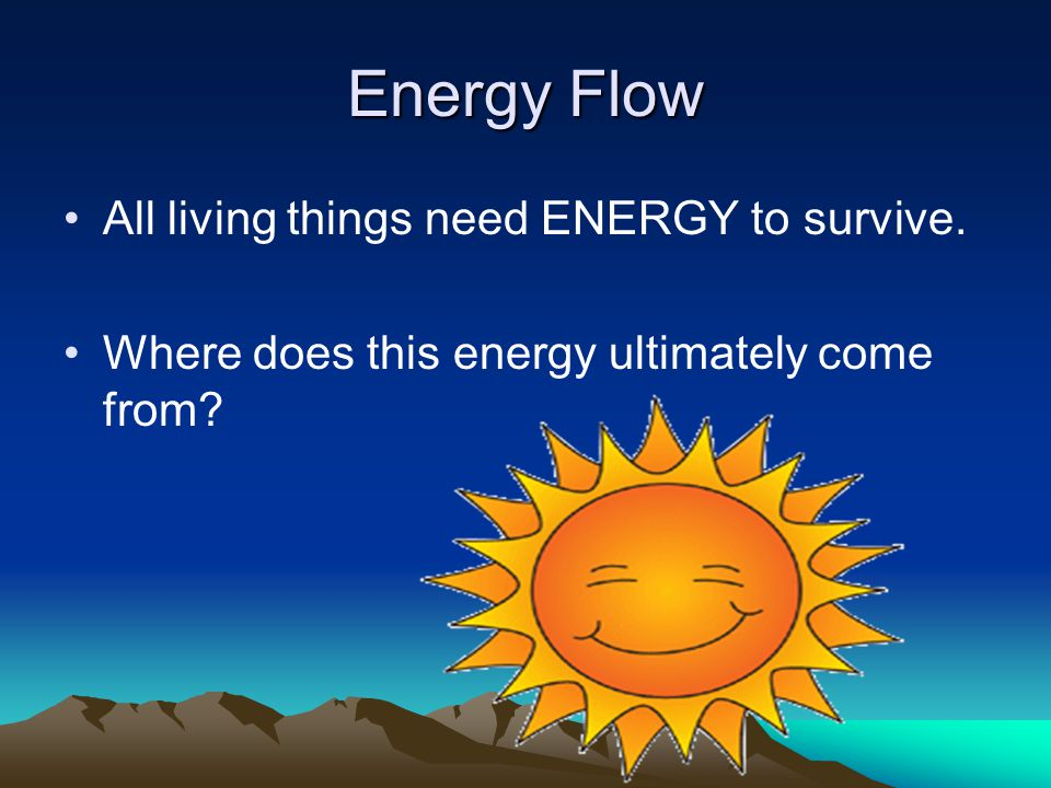 Energy Flow All living things need ENERGY to survive.