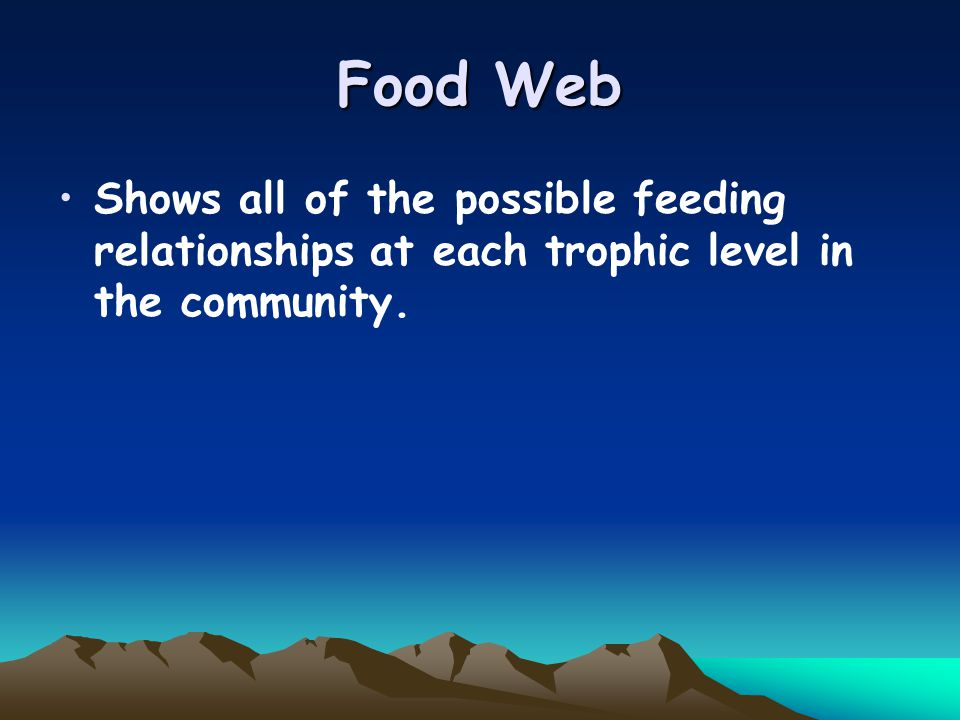 Food Web Shows all of the possible feeding relationships at each trophic level in the community.