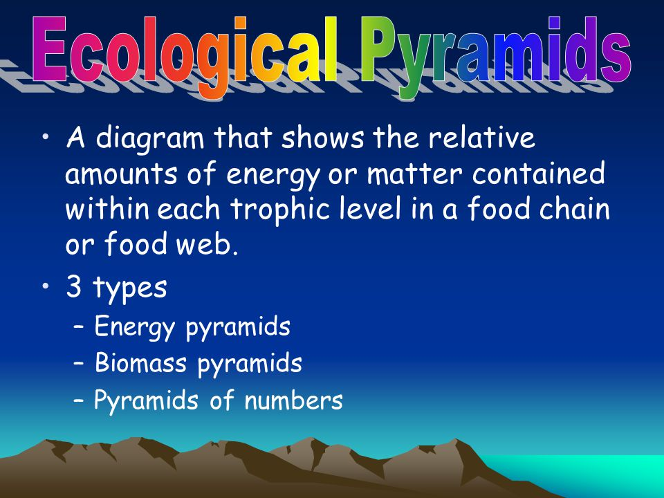 Ecological Pyramids A diagram that shows the relative amounts of energy or matter contained within each trophic level in a food chain or food web.