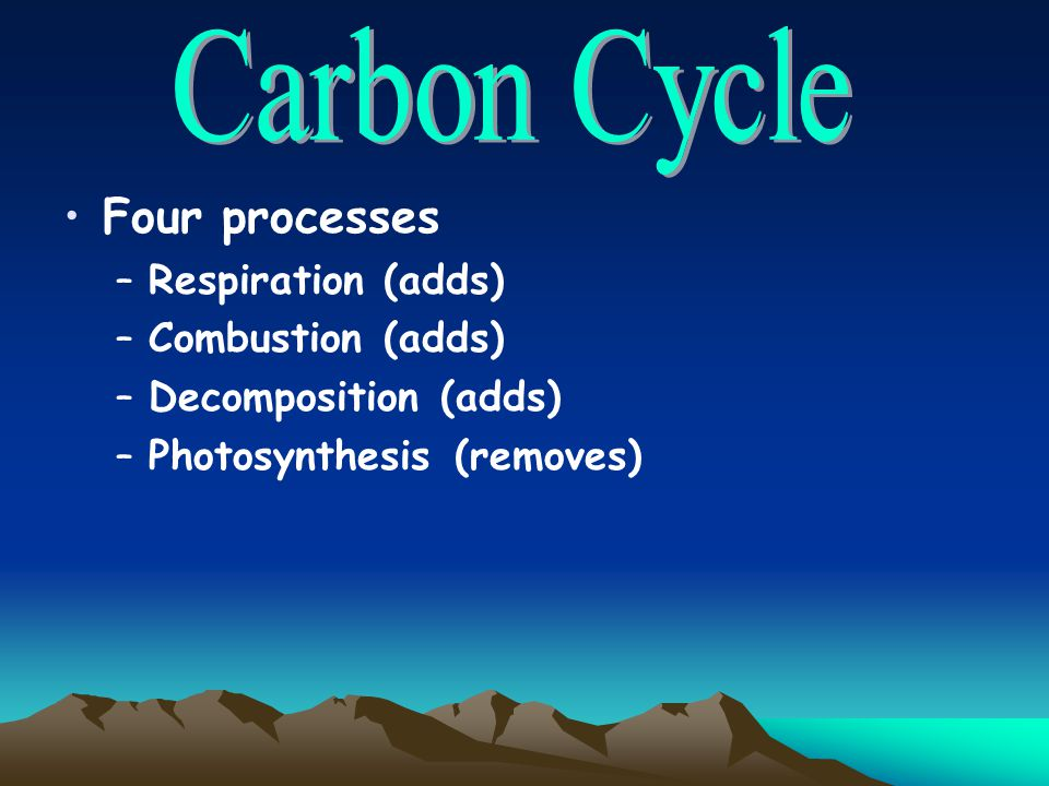 Carbon Cycle Four processes Respiration (adds) Combustion (adds)